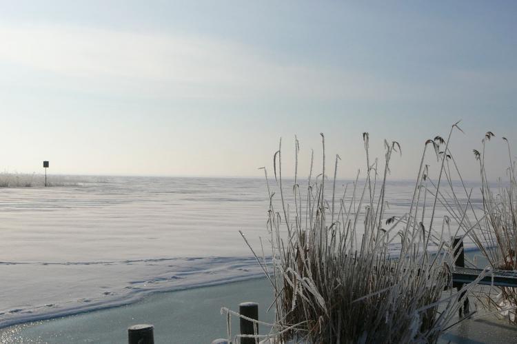 Holiday homeGermany - Mecklenburg-Pomerania: Usedom  [13]