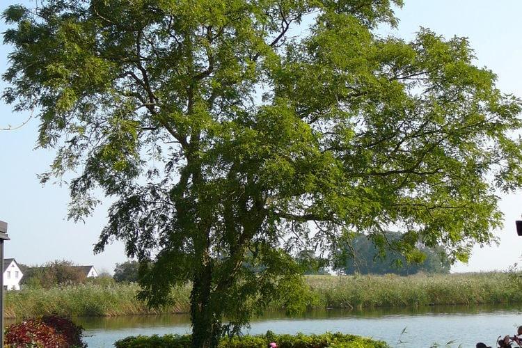 Holiday homeGermany - Mecklenburg-Pomerania: Usedom  [16]