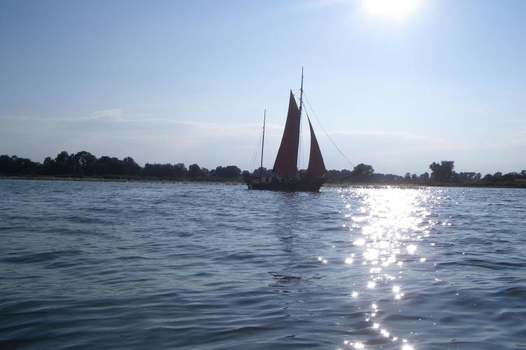 Holiday homeGermany - Mecklenburg-Pomerania: Usedom  [15]