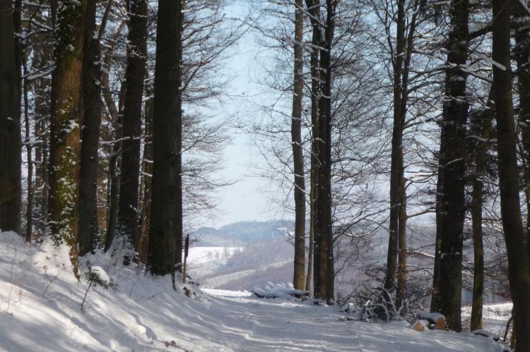 Holiday homeGermany - Sauerland: Eslohe  [31]