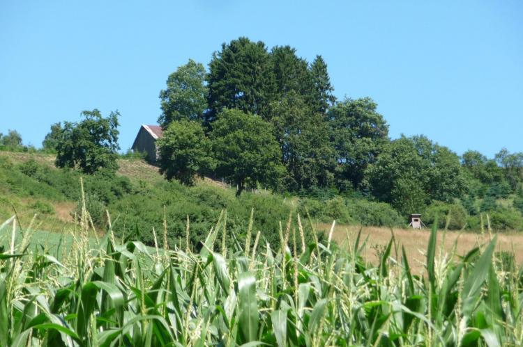 Holiday homeGermany - Sauerland: Eslohe  [30]