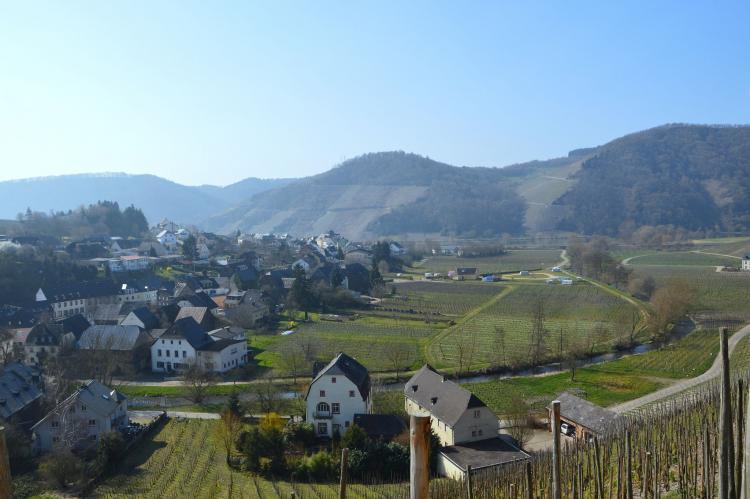 VakantiehuisDuitsland - Rheinland-Pfalz: Haus Moselblick  [39]