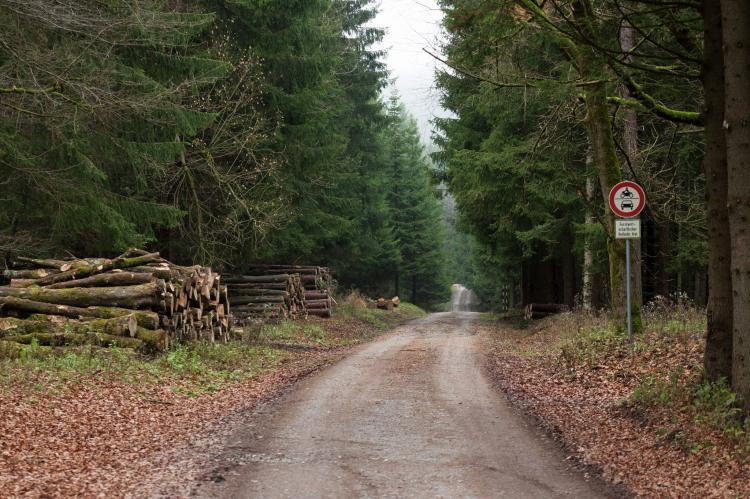 VakantiehuisDuitsland - Harz: Im Bodetal  [22]