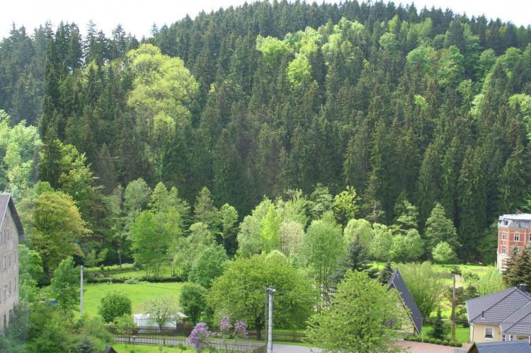VakantiehuisDuitsland - Saksen: Villa im Erzgebirge  [19]