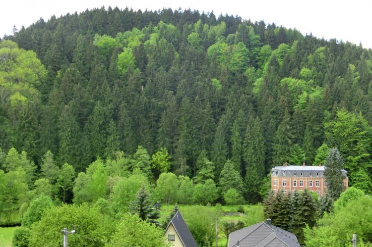 Holiday homeGermany - Saxony: Villa im Erzgebirge  [11]