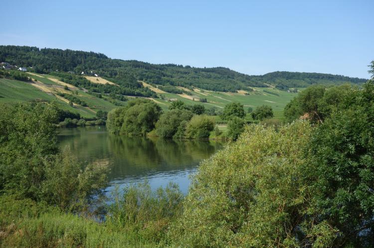 Holiday homeGermany - Rhineland-Palatinate: Wald  [38]