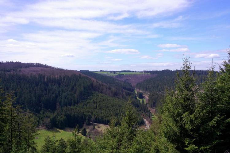 VakantiehuisDuitsland - Noordrijn-Westfalen: Waldhäuschen  [15]