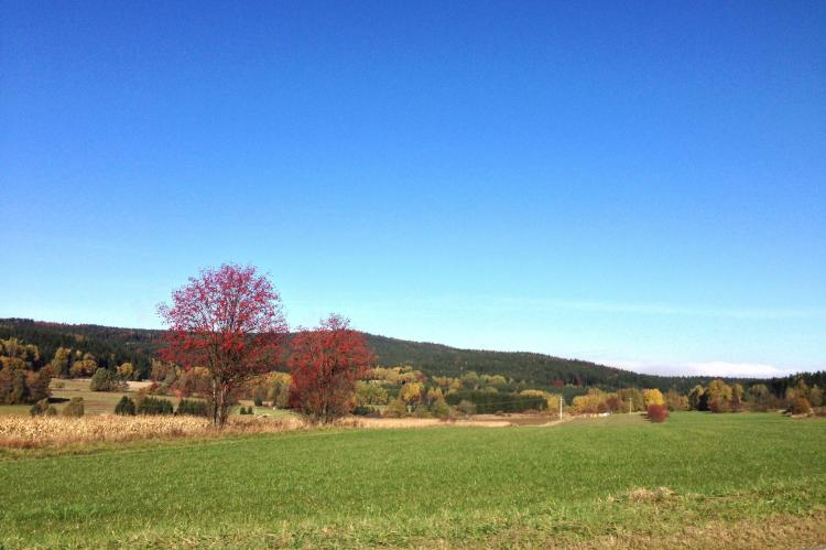 VakantiehuisDuitsland - Beieren: Haus Moni  [36]