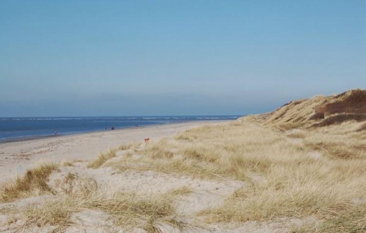 VakantiehuisDenemarken - Zuid-Denemarken: Blåvand  [20]