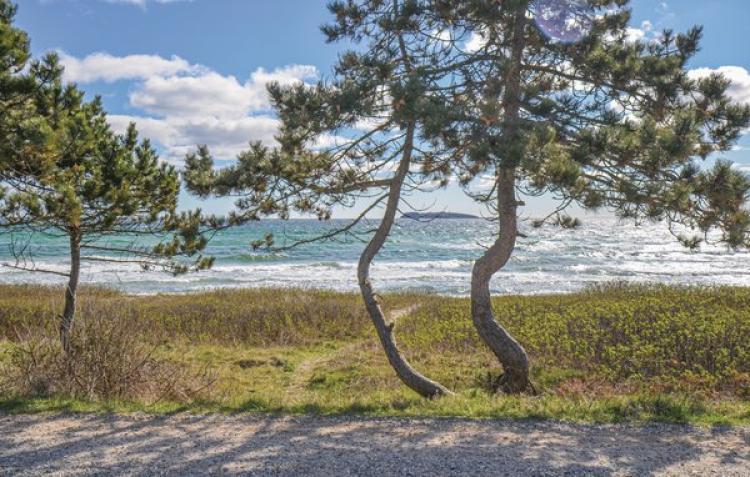 VakantiehuisDenemarken - Midden-Jutland: Ebeltoft  [43]