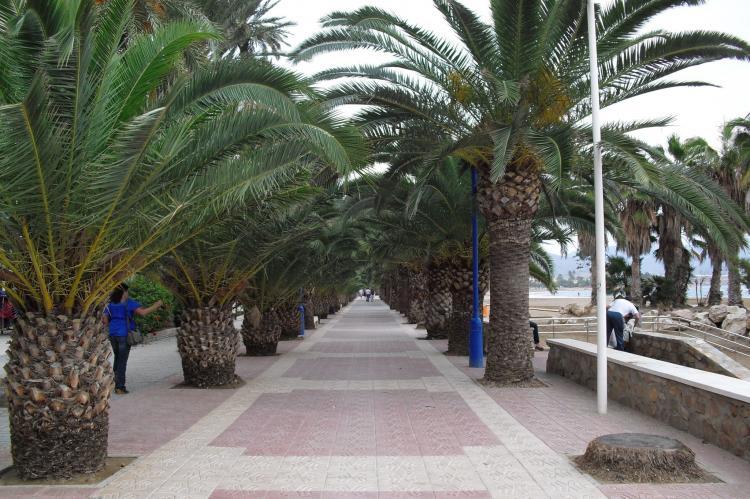 Holiday homeSpain - Costa Calida: Villa Costa de la Vida  [21]