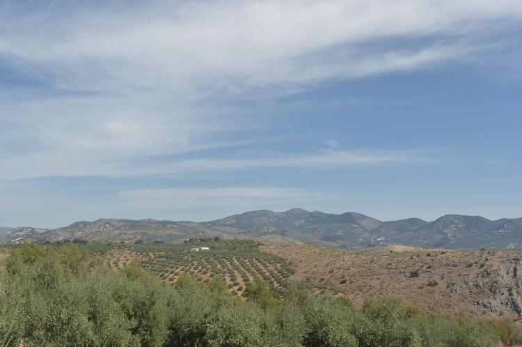 Holiday homeSpain - Andalusia Inland: Cortijo El Morron  [3]