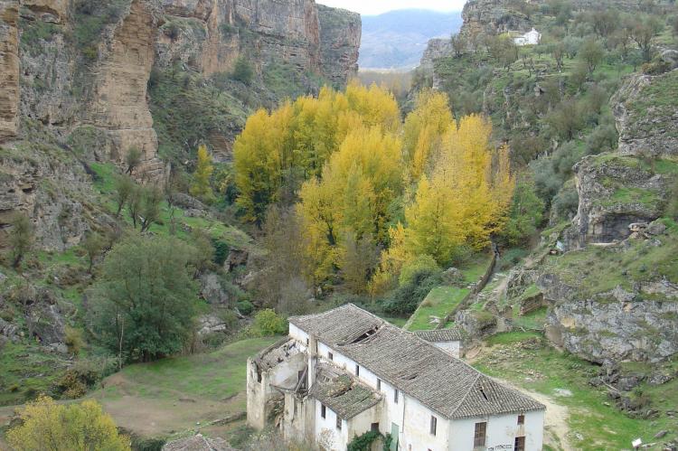 VakantiehuisSpanje - Andalusië Binnenland: Cortijo Los Alazores  [21]