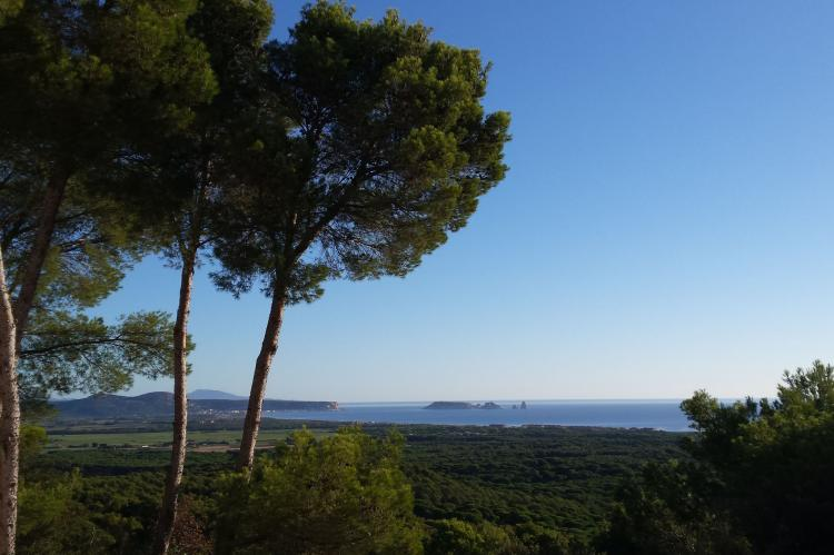 Holiday homeSpain - Costa Brava: Mas Tomasi  [36]