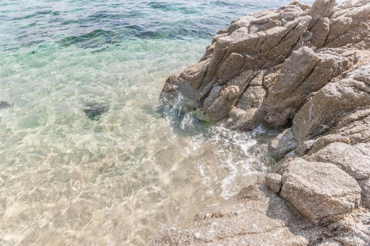 Holiday homeSpain - Costa Brava: Mas Delfi  [38]