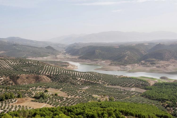Holiday homeSpain - Andalusia Inland: La Casa Vieja  [30]