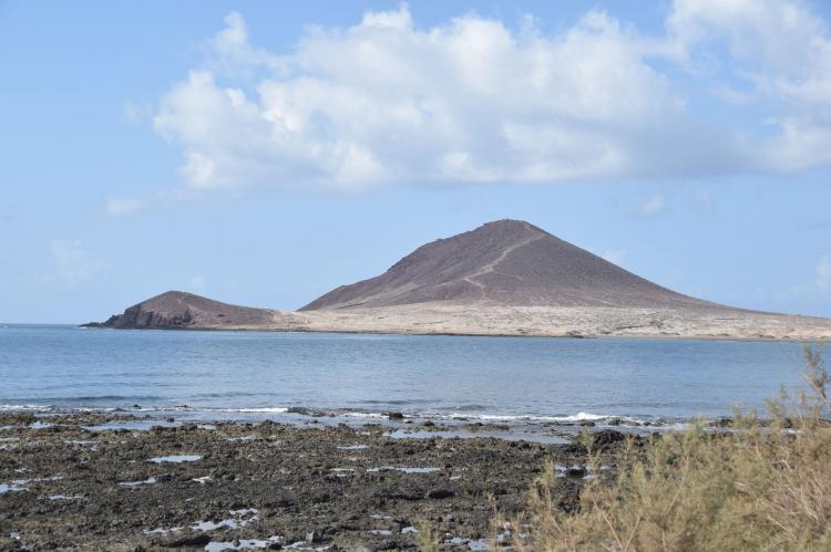 FerienhausSpanien - Kanarische Inseln: Finca Las Palmeras  [36]