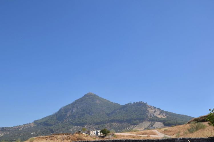 FerienhausSpanien - Andalusien Innenland: Casa Alegría  [19]