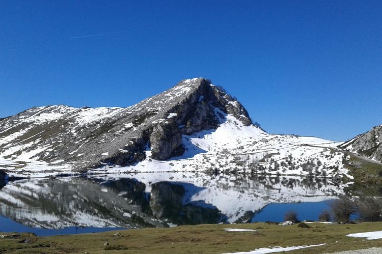 Holiday homeSpain - Asturias: Pruneda III  [36]