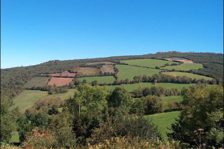 Holiday homeSpain - Asturias: Pruneda III  [32]