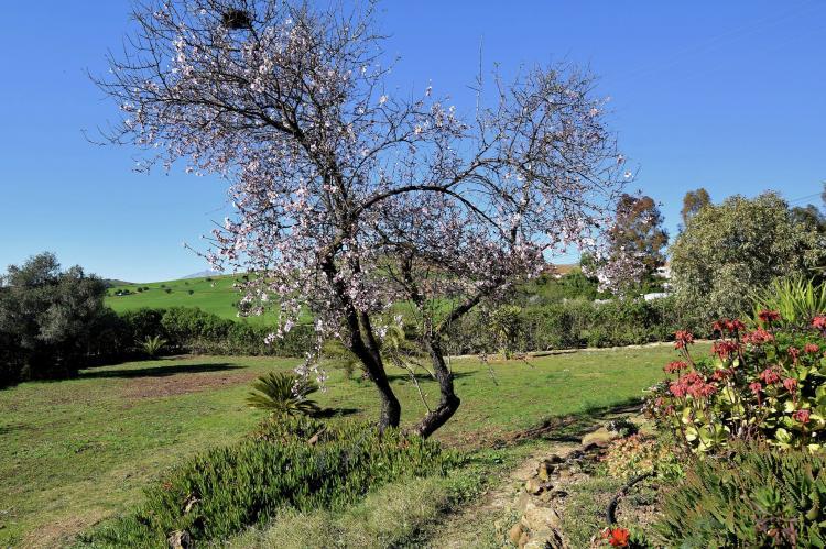 VakantiehuisSpanje - Andalusië Binnenland: Villa Sol  [25]