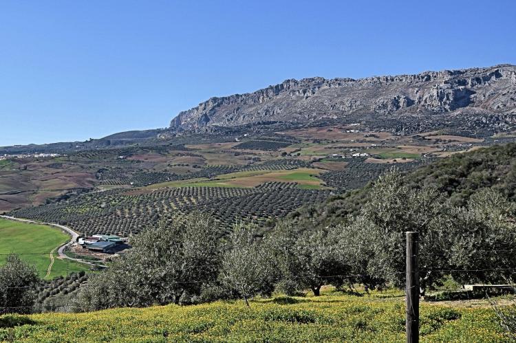 VakantiehuisSpanje - Andalusië Binnenland: Villa Sol  [35]