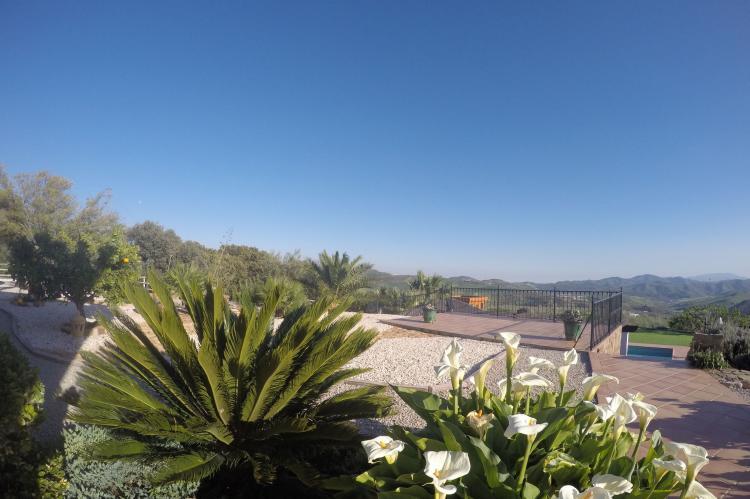 Holiday homeSpain - Andalusia Inland: Villa Los Chaparros  [5]