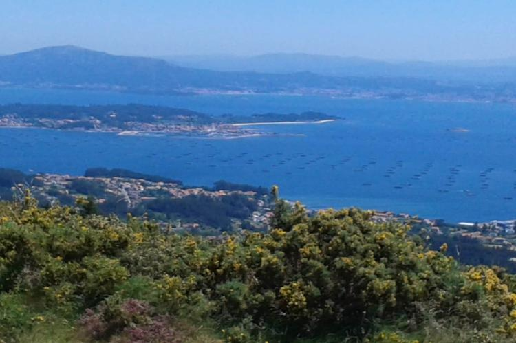 Holiday homeSpain - Galicia: Montalvo Playa 2e planta  [12]