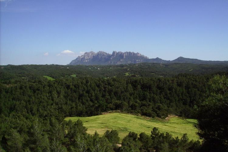 Holiday homeSpain - Catalonia Inland: Mas Set Rengs 1  [20]