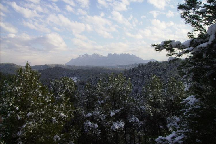Holiday homeSpain - Catalonia Inland: Mas Set Rengs 1  [21]
