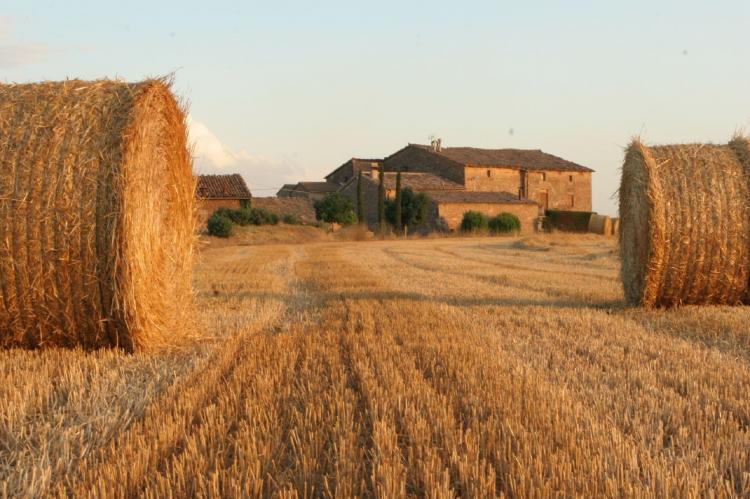 VakantiehuisSpanje - Catalonië Binnenland: Can Guilella  [34]