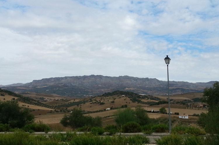 Holiday homeSpain - Andalusia Inland: Casa La Palmera  [38]