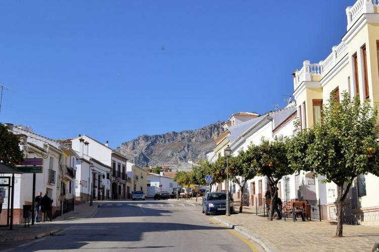 Holiday homeSpain - Andalusia Inland: Casa La Palmera  [39]