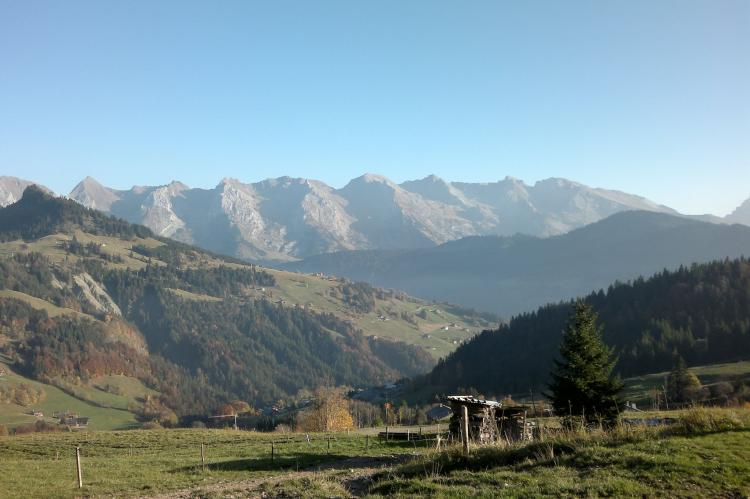 Holiday homeFrance - Northern Alps: Le Chevreuil  [32]