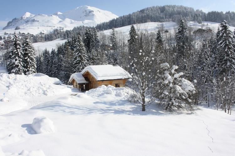 Holiday homeFrance - Northern Alps: Le Chevreuil  [33]