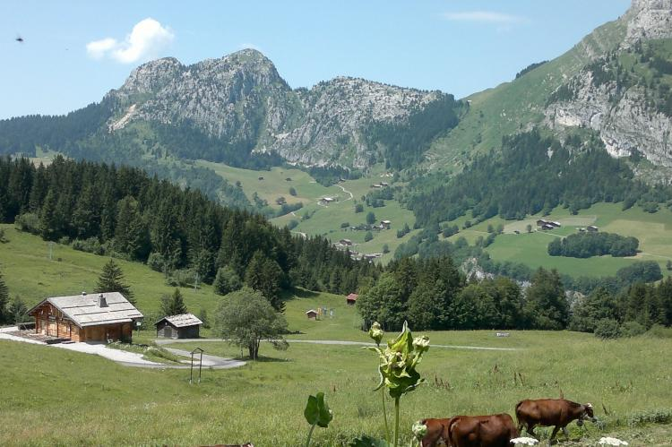 Holiday homeFrance - Northern Alps: Le Chevreuil  [31]