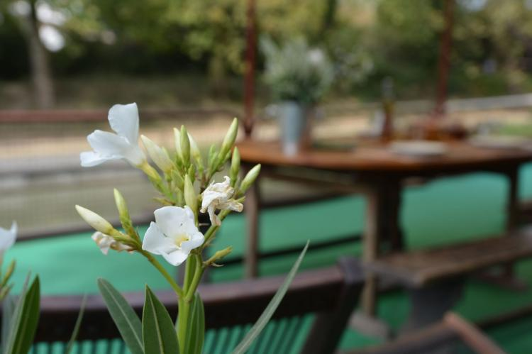 VakantiehuisFrankrijk - Languedoc-Roussillon: Péniche gîte Lodela  [34]