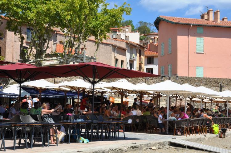 VakantiehuisFrankrijk - Languedoc-Roussillon: Mas du soleil  [25]