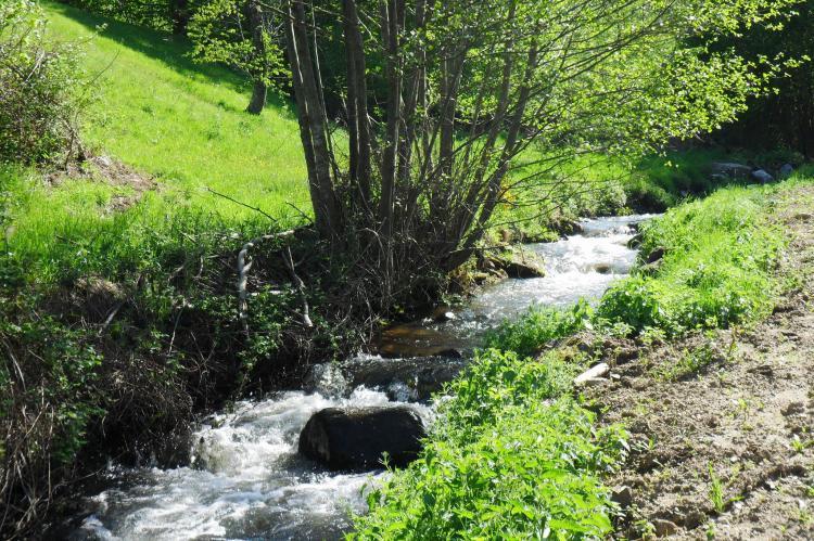 Holiday homeFrance - Auvergne: Gite - VILLENEUVE D'ALLIER  [20]