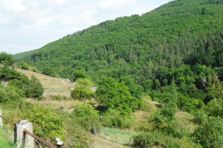 Holiday homeFrance - Auvergne: Gite - VILLENEUVE D'ALLIER  [22]
