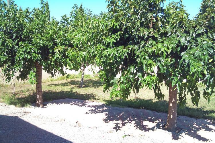 VakantiehuisFrankrijk - Languedoc-Roussillon: Jurio - ARGELIERS  [16]