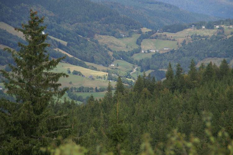 VakantiehuisFrankrijk - Région Lorraine: La Marmotte  [23]