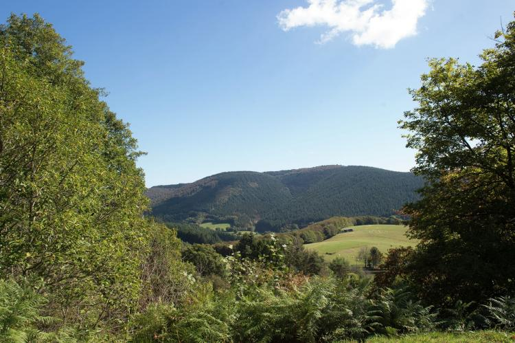 VakantiehuisFrankrijk - Bourgogne: Ste Odile  [37]