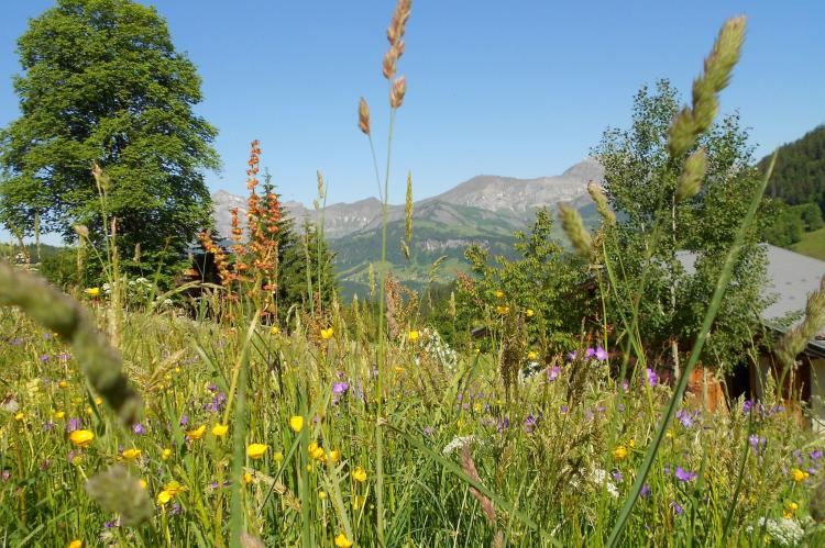Holiday homeFrance - Northern Alps: Notre Dame de Bellecombe  [13]