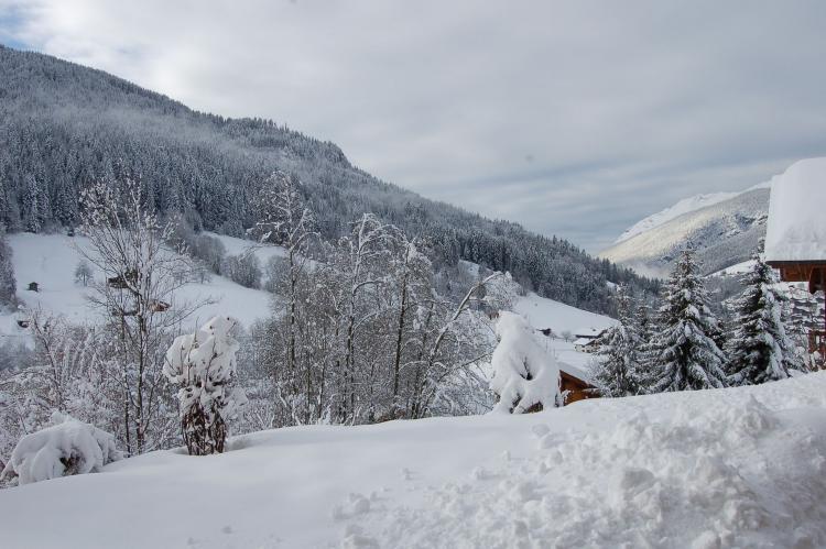 VakantiehuisFrankrijk - Noord Alpen: Sabaudia - Lachat  [12]
