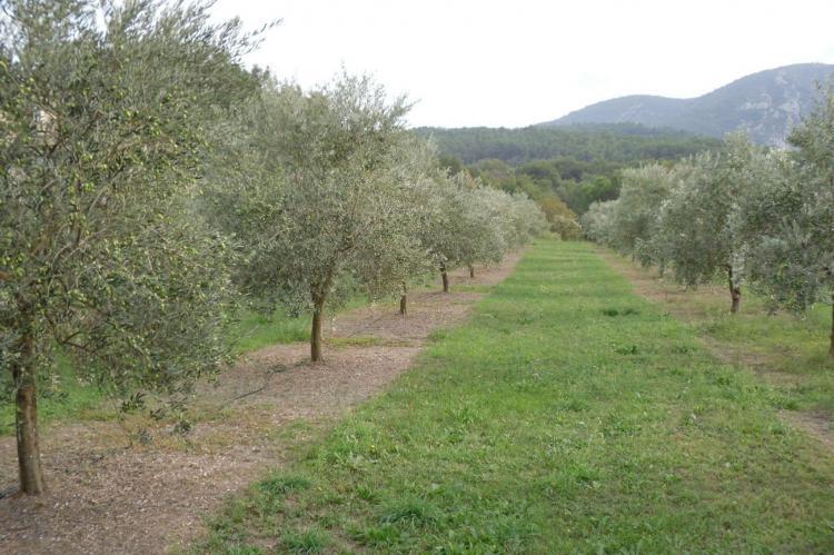 Holiday homeFrance - Provence-Alpes-Côte d'Azur: Le Gîte  [28]