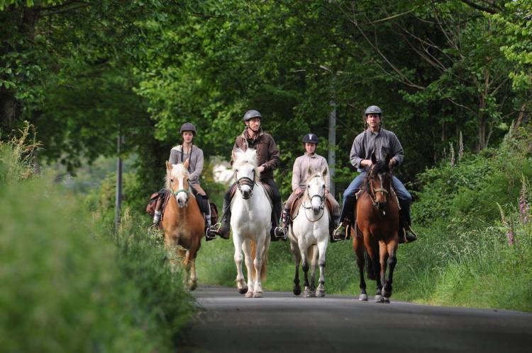 Holiday homeFrance - Dordogne: La Borderie  [34]