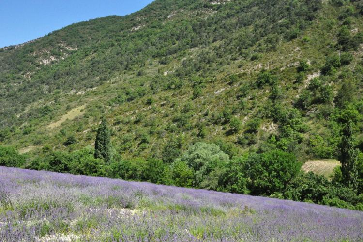 VakantiehuisFrankrijk - Provence-Alpes-Côte d'Azur: Maison Fayence  [30]