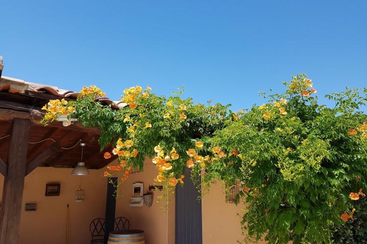 Holiday homeFrance - Provence-Alpes-Côte d'Azur: villa Fourniguières  [36]
