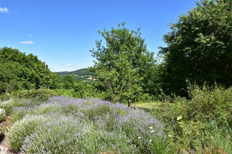 Holiday homeFrance - Burgundy: Vue de Pannecière  [28]